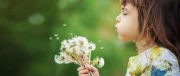 Tipps bei Allergien aus Bad Camberg